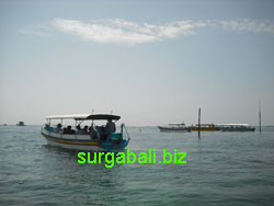 glass buttom boat tour pulau penyu